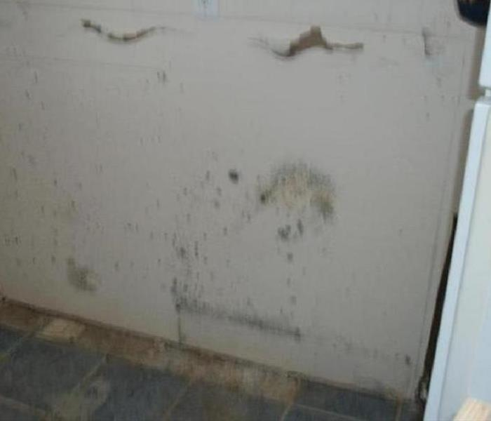 Mold damage – Asheville Condominium Before