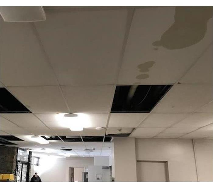 Commercial 4 Signs You Need To Call a Restoration Company for Water Damage